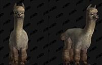 新坐骑萌到爆炸 可爱羊驼入住艾泽拉斯