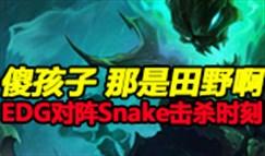 德玛西亚杯半决赛 EDG vs Snake击杀时刻3:2