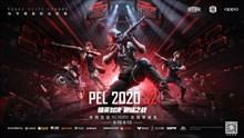 张伟丽空降和平精英PEL决赛,8月20日巅峰之战火热开启