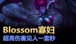 大神怎么玩:Blossom寡妇 恐怖伤害见人一套秒