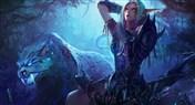 改良加基森70%胜率猎人:新火花兽王猎卡组