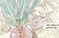 咬人画的:最近比较忙 空闲后的观叶植物感